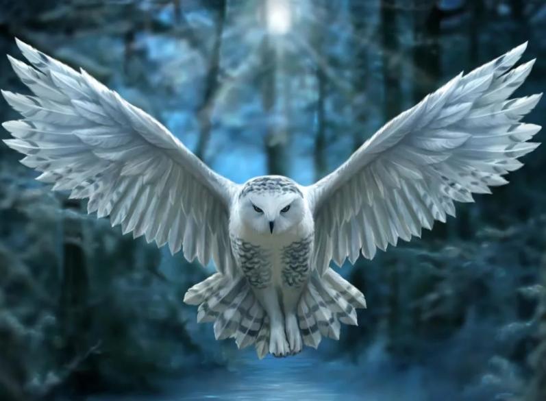 Дух совы