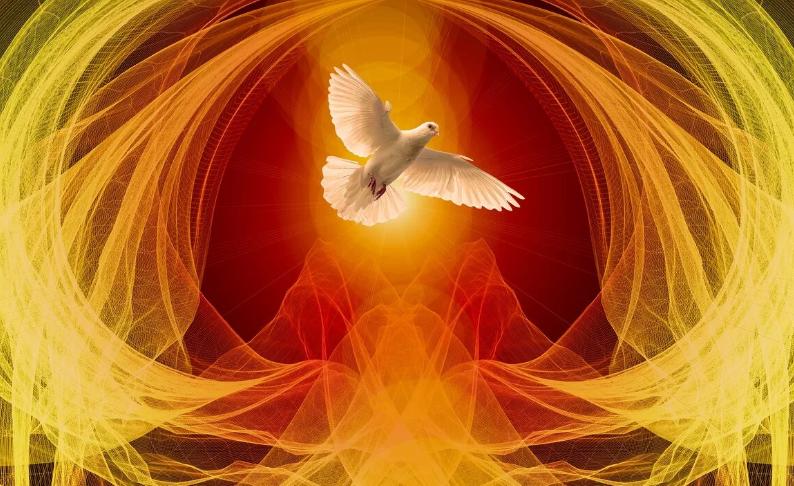 Душа голубя