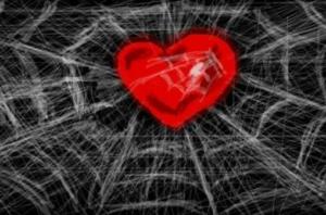 Сердце в паутине